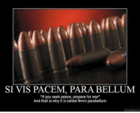 """Memes, Cold, and Peace: SI VIS PACEM, PARA BELLUM  """"If you seek peace, prepare for war""""  And that is why it is called 9mm parabellum  OPEDESPAR.COMM -- Cold Dead Hands Gun Rights Apparel: Cdh2a.com/shop"""