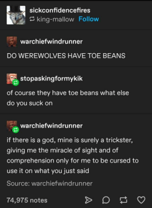27+ Funny Tumblr Posts That Are Humourous AF ! - LADnow: sickconfidencefires  king-mallow Follow  warchiefwindrunner  DO WEREWOLVES HAVE TOE BEANS  stopaskingformykik  of course they have toe beans what else  do you suck on  warchiefwindrunner  if there is a god, mine is surely a trickster,  giving  me the miracle of sight and of  comprehension only for me to be cursed to  use it on what you just said  Source: warchiefwindrunner  74,975 notes 27+ Funny Tumblr Posts That Are Humourous AF ! - LADnow