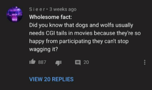awesomacious:  This wholesome fact: Sieer 3 weeks ago  LOVE  Wholesome fact:  Did you know that dogs and wolfs usually  needs CGI tails in movies because they're so  happy from participating they can't stop  wagging it?  目 20  887  VIEW 20 REPLIES awesomacious:  This wholesome fact
