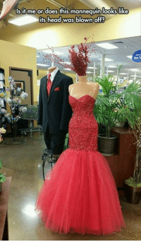 Dank, Head, and Mannequin: sif me or doesthis mannequin lookslik  its head was blown off?  for l