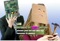 "Reddit, Never, and Peace: sig h  motherboard is always yelling  please just let me use my  hammer in peace <p>[<a href=""https://www.reddit.com/r/surrealmemes/comments/7k3387/never_any_privacy/"">Src</a>]</p>"