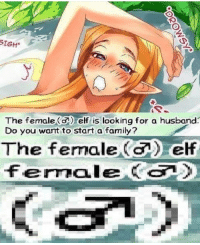 Elf: SIGH  The female ( elf is looking for a husband:  Do you want to start a family?  The female (a) elf  fernale (c