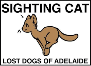 Dogs, Kitties, and Memes: SIGHTING CAT  LOST DOGS OF ADELAIDE SIGHTING CAT Hope Valley #Adelaide 4/6/19 1:30 am Grand Junction Road, near Hope Valley Reservoir (100 metres past, heading toward hills) a group of 6 foxes on the road, circling a small (young but not kitten, black cat with white chest). Sadly one of the foxes ran off with the cat. Please keep your kitties safe peeps.