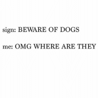 Dogs, Omg, and Girl Memes: sign: BEWARE OF DOGS  me: OMG WHERE ARE THEY Don't apologize to me when your dog comes up to me. This is what I wanted.