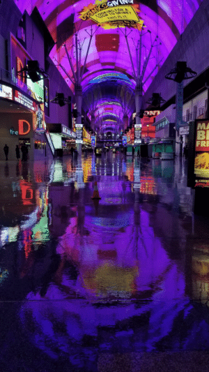 Picture I took of fremont street in vegas (OC): SIGN TO DRINK?  THIS IS IT  OOKINGFOR A  Wednesday, Nov.27  Party Starts, at 3pm  Ihe  THANKYOUFORPUTING US ONTOP  VOTE NEST LAS VEGA CANO  NT  MA  BI  FRI  INDIAN  ARTS&CRA  OASntow  DEAnto  NDIVI  FREI CENCERT  WIL TEL. 4  FREE CONKERT  WEL. HR  HOUNEY ATKINS  9:50pm  DILAN SEUTT  Cary liknl  the  ROUNEY ATKINS  R50pm  **HIU DOGS  DYU SCUTT  8:40pm  FILKONE  8:40pm  FILMONE  7:30pm  7:30p  Take a bit  AMERI  Coney N  CHIL  AERICAN Picture I took of fremont street in vegas (OC)