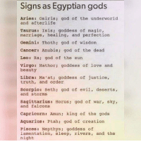 Memes, Egyptian, and 🤖: Signs as Egyptian gods  Aries osiris; god of the underworld  and afterlife  Taurus Isis goddess of magic,  marriage, healing, and perfection  Gemini: Thoth: god of wisdom  Cancer: Anubis: god of the dead  Leo: Ra; god of the sun  virgo: Hathor: goddess of love and  beauty  Libra Ma at; goddess of justice,  truth, and order  Scorpio: Seth; god of evil, deserts,  and storms  Sagittarius Harus  god of war, sky,  and falcons  Capricorn: Amun king of the gods  Aquarius: Ptahn god of creation  Pisces Nepthys  goddess of  lamentation, sleep, rivers, and the  night Speaks volumes, Gemini here😆😉✌