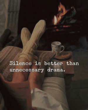 Silence, Unnecessary, and  Better: Silence is better than  unnecessary arama.