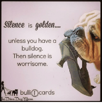 Memes, True, and Bulldog: Silence is golden...  unless you have a  bulldog  Then silence is  worrisome.  bulli E cards  he Diva D True?