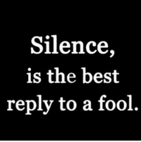Memes, Silence, and 🤖: Silence,  is the best  reply to a fool MSG