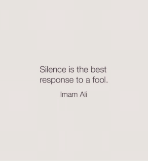 Best Response: Silence is the best  response to a fool.  Imam Ali