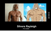 25 best silver rayleigh one piece memes silver rayleigh memes