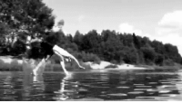 "silverstarky:  wonderland-perfection:  winks-and-hairwhips:  when I first saw this gif I didn't realize that the water was shallow so I was like ""OH MY GOD ITS TUMBLING JESUS""  TUMBLING JESUS  Representing heaven, is Mr J.Christ who's been training since B.C. : silverstarky:  wonderland-perfection:  winks-and-hairwhips:  when I first saw this gif I didn't realize that the water was shallow so I was like ""OH MY GOD ITS TUMBLING JESUS""  TUMBLING JESUS  Representing heaven, is Mr J.Christ who's been training since B.C."