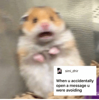 "9gag, Meme, and Memes: simi_dhir  When u accidentally  open a message u  were avoiding The birth of a new meme. - Shout out to everyone who contributed to this meme. Think that you can caption this better? Stay tuned to our IG story for the next ""Caption This""! - captionthis scaredhamster 9gag"