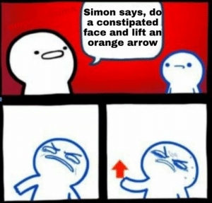Arrow, Orange, and Irl: Simon says, do  a constipated  face and lift an  orange arrow  10 me_irl