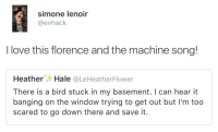 Love, Banging, and Florence and the Machine: simone lenoir  @evhack  I love this florence and the machine song!  HeatherHale @LeHeatherFlower  There is a bird stuck in my basement. I can hear it  banging on the window trying to get out but I'm too  scared to go down there and save it.