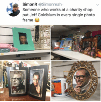 Blessed, Meme, and Memes: SimonR @Simonreah  Someone who works at a charity shop  put Jeff Goldblum in every single photo  Trame Post 1177: two photo swaps in one day, the meme gods have truly blessed us