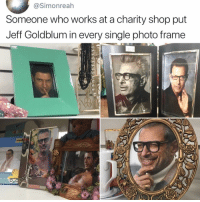 Memes, Jeff Goldblum, and Lmfao: @Simonreah  Someone who works at a charity shop put  Jeff Goldblum in every single photo frame  187 Lmfao