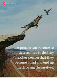 Memes, 🤖, and Simple: SIMPLE CAPACITY  person can become so  determined to destroy  another person that they  become blind and end up  destroying themselves Simple Capacity