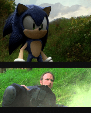 Nostalgia, Tumblr, and Blog: simtunes: graynard: with a lot of content sprawling around about the new sonic movie, i would like to remind everyone of the sonic fan movie featuring a cameo from the nostalgia critic  AND the avgn
