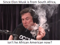 african: Since Elon Musk is from South Africa,  isn't he African American now?
