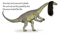 Dinosaurs, Hair, and Dank Memes: Since hair isn't preserved in fossils,  We can't rule out the possibilty that  Dinosaurs looked like this. really makes you think