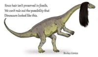 Memes, Dinosaurs, and Hair: Since hair isn't preserved in fossils,  We can't rule out the possibility that  Dinosaurs looked like this.  Starkey Comics  OLICS Credit: Starkey Comics