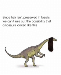 Memes, Dinosaurs, and Hair: Since hair isn't preserved in fossils,  we can't rule out the possibility that  dinosaurs looked like this