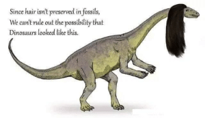 Dinosaurs, Hair, and This: Since hair isn't preserved in fossils,  We can't rule out the possibility that  Dinosaurs looked like this. We should expect everything