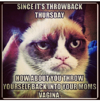 real grumpycat tbt: SINCE ITS THROWBACK  THURSDAY  HOW ABOUT YOU THROW  YOURSELF BACK INTO YOUR MOMS  VAGINA real grumpycat tbt