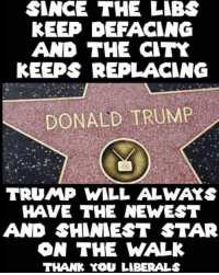 Donald Trump, Memes, and Thank You: SINCE THE LIBS  KEEP DEFACING  AND THE CITK  KEEPS REPLACING  DONALD TRUMP  TRUMP WILL ALWAYS  HAVE THE NEWEST  AND SHINIEST STAR  ON THE WALK  THANK YOU LIBERALS Hahah thanks