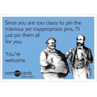 Or post them as the case maybe yourewelcome: Since you are too classy to pin the  hilarious yet inappropriate pins, l'll  just pin them all  for you.  You're  welcome  somee cards  user card. Or post them as the case maybe yourewelcome