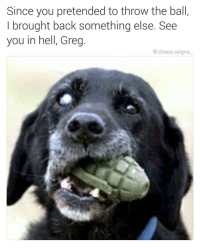 """Memes, Good, and Http: Since you pretended to throw the ball  I brought back something else. See  you in hell, Greg.  @chaos.reigns <p>Not good doggo via /r/memes <a href=""""http://ift.tt/2GbmkjL"""">http://ift.tt/2GbmkjL</a></p>"""