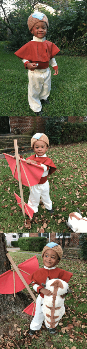 since1938: I was gonna take a nap but everything changed when the Fire Nation attacked. Happy Halloween  this is so cute idk what to do i want to yell: since1938: I was gonna take a nap but everything changed when the Fire Nation attacked. Happy Halloween  this is so cute idk what to do i want to yell