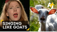 This choir wants to empower women by making goat Christmas carols.  🐐 + 🎄 = ❤: SINGING  LIKE GOATS This choir wants to empower women by making goat Christmas carols.  🐐 + 🎄 = ❤
