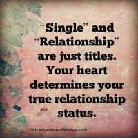 """Relationship Statuses: Single and  """"Relationship  are just titles.  Your heart  determines your  true relationship  status.  lifeloevquotesandsayings.com"""