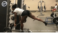 Memes, Videos, and Worldstar: SINGLE L G DEADLIFT (SMITH MACHINE Today's Worldstar fitness girl of the day is @IAmNayFit To submit your videos use this hashtag WSHHFitness