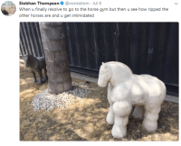 Gym, Horses, and Horse: Siobhan Thompson. @vornietom . Jul 8  When u finally resolve to go to the horse gym but then u see how ripped the  other horses are and u get intimidated me irl