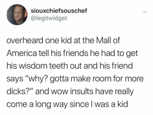 "America, Dicks, and Friends: siouxchiefsouschef  @legitwidget  overheard one kid at the Mall of  America tell his friends he had to get  his wisdom teeth out and his friend  says ""why? gotta make room for more  dicks?"" and wow insults have really  come a long way since l was a kid The savagery"
