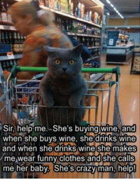 Memes, 🤖, and Page: Sir, help me. She's buying wine, and  when she buys wine, she drinks wine  and when she drinks wine she makes  me wear funny clothes and she calls  me her baby. She's crazy man, help For more cute pics LIKE us at The Purrfect Feline Page