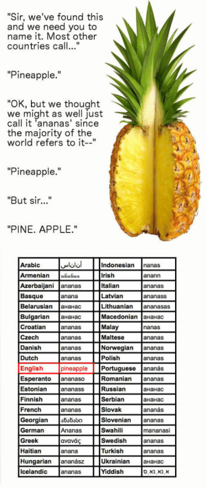 "Apple, Irish, and Tumblr: Sir, we've found this  and we need you to  name it. Most other  countries call...""  ""Pineapple.""  OK, but we thought  we might as well just  call it 'ananas' since  the majority of the  world refers to it-""  ""Pineapple.""  ""But sir...""  ""PINE. APPLE.""  Arabic  Armenian GGu  Azerbaijani ananas  Basque  Belarusian aHaHac  Bulgarian aHaHac  Croatian  Czech  Danish  Dutch  English  Indonesian nanas  Irish  Italian  Latvian  Lithuanian ananasas  Macedonian 