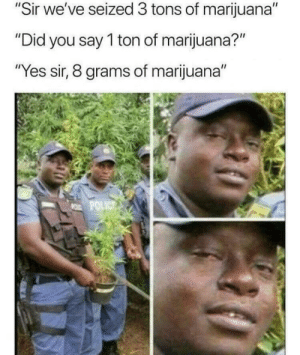 "Dank, Memes, and Target: ""Sir we've seized 3 tons of marijuana""  Did  Did you say T ton of marijuana?  ""Yes sir, 8 grams of marijuana"" Kowalski analysis by DoekaanET MORE MEMES"