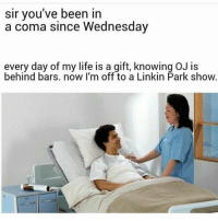 Life, Memes, and Wednesday: sir you've been in  a coma since Wednesday  every day of my life is a gift, knowing OJ is  behind bars. now I'm off to a Linkin Park show. LMFAOOO