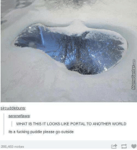 Jump in and start your adventure!: sircuddlebuns:  Serene flaws:  WHAT IS THIS IT LOOKS LIKE PORTAL TO ANOTHER WORLD  its a fucking puddle please go outside  266,483 notes Jump in and start your adventure!