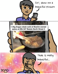 Never have I seen something so beautiful.... (Admin note: can someone blanja this for me pls thx): Siri, Show me a  beautiful Picture  1.4kg Angus steak sold at Muslim-owned  eatery at Blk 527 Bedok North Street 3  That is really  beautrfu  SGAG Never have I seen something so beautiful.... (Admin note: can someone blanja this for me pls thx)