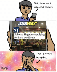 You're doing great sweety 💖💖: Siri, Show me a  beautiful Picture  SUBWAY.  ST  Subway Singapore applying  for halal certificate  That is really  beautiful  SGAG You're doing great sweety 💖💖