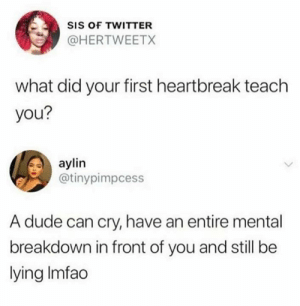 Wow that is rough: SIS OF TWITTER  @HERTWEETX  what did your first heartbreak teach  you?  aylin  @tinypimpcess  A dude can cry, have an entire mental  breakdown in front of you and still be  lying Imfao Wow that is rough