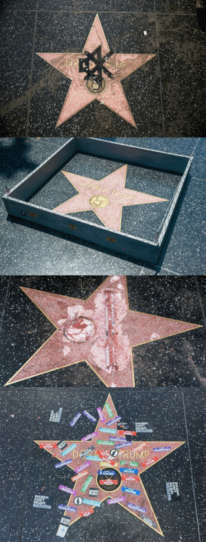 rosiethequeer:   scorpia6:   weavemama:  weavemama: shoutout to all the people who took time in decorating trump's hollywood star the way it should be and yes, i said decorating not vandalizing….. this shit right here is ART   I support this art 👏🏾👏🏾👏🏾   True masterpieces 💯💯💯 : SIST DISSENT  DISSENT rosiethequeer:   scorpia6:   weavemama:  weavemama: shoutout to all the people who took time in decorating trump's hollywood star the way it should be and yes, i said decorating not vandalizing….. this shit right here is ART   I support this art 👏🏾👏🏾👏🏾   True masterpieces 💯💯💯