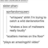 "sister-phan:  spnfandomqueen  *whispers"" shhh I'm trying to  catch a wild danisnotonfire  *shakes a box of maltesers  really loudly*  *scatters memes on the floor  plays an amazingphil video* >•< >•< >•< >•< >•< >•< >•< >•< >•< >•< >•< >•< phan phandom danandphil amazingphil phillester danhowell danisnotonfire"