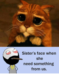 Be Like, Meme, and Memes: Sister's face when  she  need something  from us. Twitter: BLB247 Snapchat : BELIKEBRO.COM belikebro sarcasm meme Follow @be.like.bro