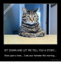 demotivational: SIT DOWN AND LET ME TELL YOU A STORY.  Once upon a time... I ate your hamster this morning...  Demotivation